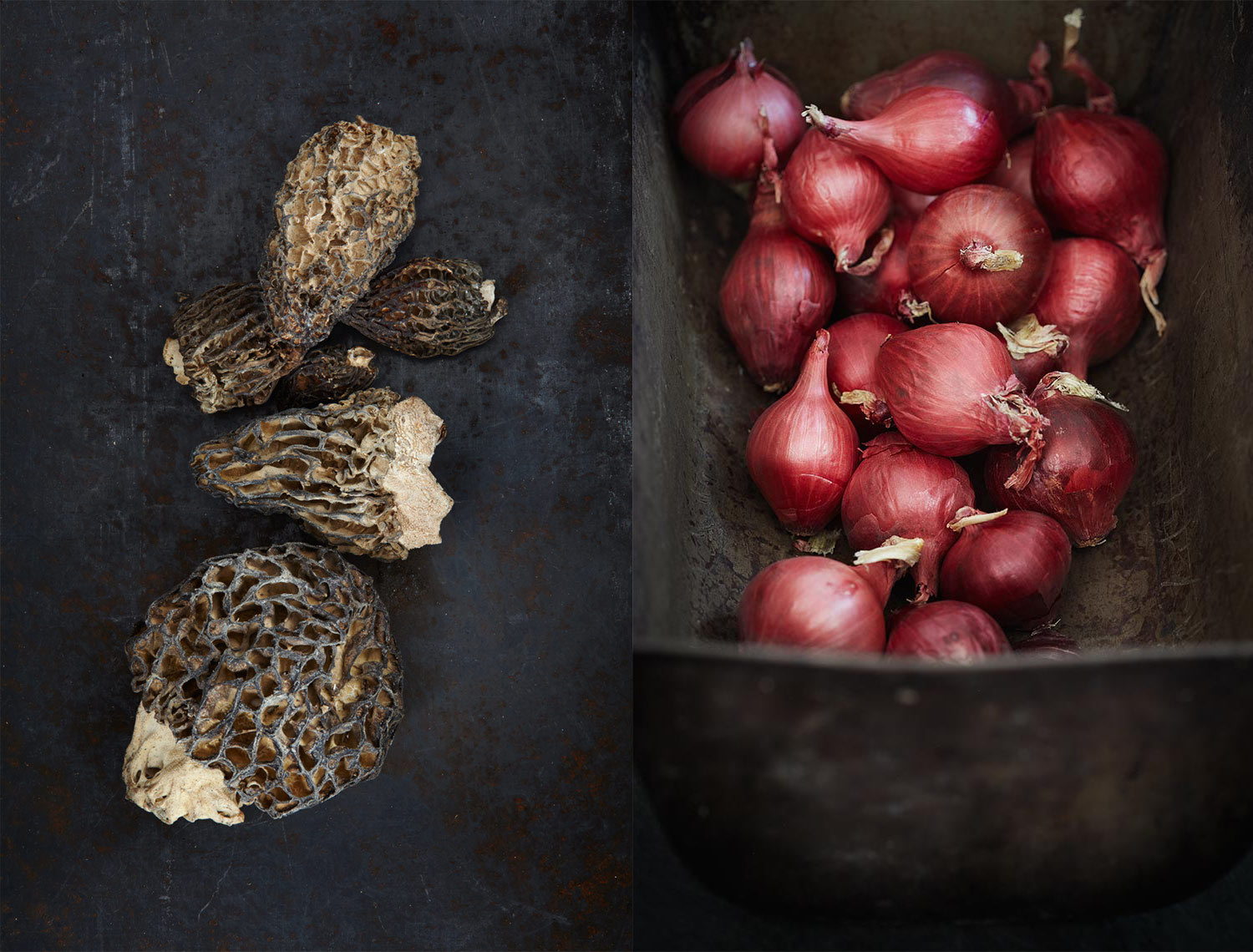 morels_onion_dyp
